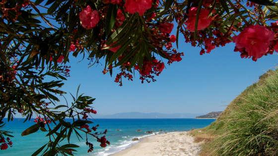 sandomenicoresort_spiaggia_01.jpg